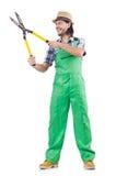 Male gardener isolated on white Stock Image