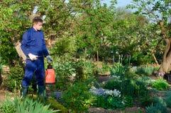 Male gardener protecting plant Stock Photo