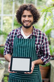Male gardener showing digital tablet at greenhouse. Portrait of happy male gardener showing digital tablet while standing at greenhouse Royalty Free Stock Photo