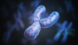 Male gender Y chromosome. Genetics concept. 3D rendered illustration.  stock illustration