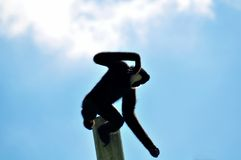 Male Gibbon monkey jumping off pole Royalty Free Stock Photography