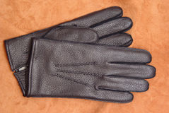 Male glove. Two male leather gloves on deerskin Royalty Free Stock Images