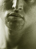 Male goatee. Sepia male chin goatee Stock Photos