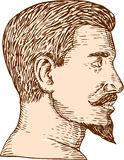 Male Goatee Side View Etching Royalty Free Stock Image