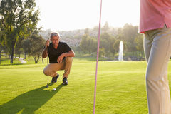 Male Golfer Lining Up Putt On Green Stock Photography