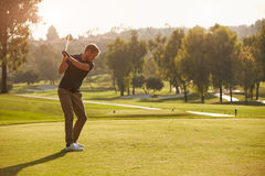 Male Golfer Lining Up Tee Shot On Golf Course Stock Image