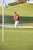 Male Golfer Playing Bunker Shot Royalty Free Stock Images