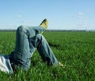 male gröna ben för fält Fotografering för Bildbyråer