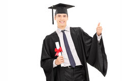 Male graduate holding diploma and giving thumb up. Isolated against white background Royalty Free Stock Photo