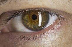 Eye macro. Male green eye extreme macro stock photos