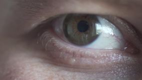 Male green eye macro video. Looks, blinks stock video footage