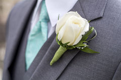Male in grey suit with white rose Royalty Free Stock Photography
