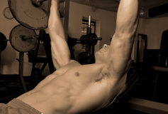 Male in gym Royalty Free Stock Photos