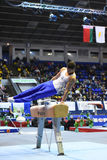 Male gymnast performing on pommel horse Stock Image
