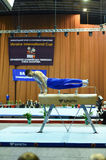 Male gymnast performing on pommel horse Royalty Free Stock Photography