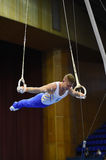 Male gymnast performing on pommel horse Stock Photo