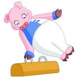 Male gymnast pig Stock Image