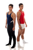 Male Gymnasts Royalty Free Stock Photo