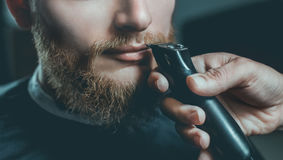 A male hairdresser does a haircut of a beard and a mustache Royalty Free Stock Photo