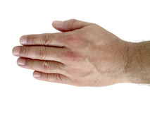 Male Hand. Open male hand indicating the left side isolated in white Stock Photography