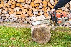 Male hand with chainsaw is cutting firewood. Man with chainsaw cutting fire wood from trees stumps stock photos