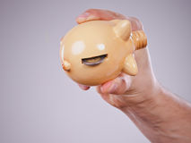 Male hand with coins and piggybank stock image