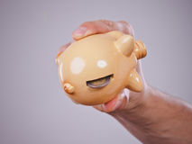 Male hand with coins and piggybank stock photo