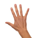 Male hand counting. Young male back of the hand counting to five stock photo