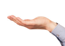 Male hand cupped Stock Photo
