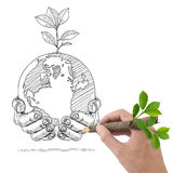 Male hand drawing Globe and Plant. Stock Images