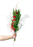 Male hand holding beautiful bouquet of roses Royalty Free Stock Photo