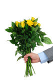 Male hand holding bunch of roses Royalty Free Stock Photos