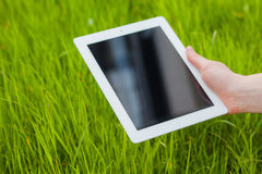 Male hand holding digital tablet on a grass field. Concep photo. Royalty Free Stock Images