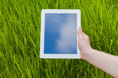 Male hand holding digital tablet on a grass field. Concep photo. Royalty Free Stock Image