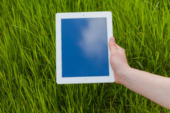 Male hand holding digital tablet on a grass field. Concep photo. Stock Image