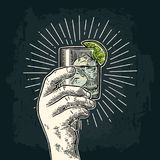 Male hand holding a glass with gin. Vintage vector engraving. Male hand holding a glass with gin, lime and ice cubes. Vintage vector color and monochrome Royalty Free Stock Photo