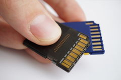 Male hand holding isolated plastic blue and black compact memory cards SD card - Secure Digital card used in cameras Royalty Free Stock Photography