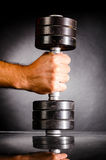 Male hand is holding metal barbell Royalty Free Stock Photo