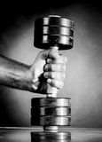 Male hand is holding metal barbell Stock Photos