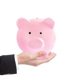 Male hand holding piggy bank Royalty Free Stock Images