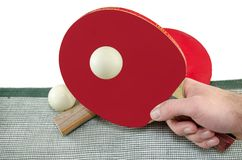 Male hand holding a ping pong racket, isolated Stock Image