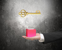 Male hand holding red block with golden dollar sign Royalty Free Stock Photo