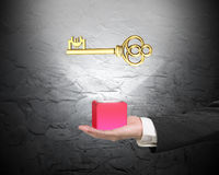 Male hand holding red block with golden Euro symbol Stock Image