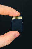 Male hand holding SD card. Royalty Free Stock Photo