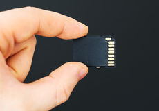 Male hand holding SD card. Royalty Free Stock Photography