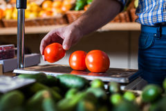 Male hand holding a tomato over the weights. Ecological food. Grocery on the background Royalty Free Stock Images