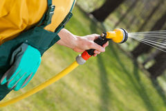 Male hand with a hose watering grass Stock Photos