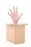 Male hand inside cardboard box isolated on white Stock Photography