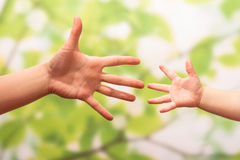 Male hand leading child Stock Photo