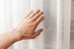 Male hand opens soft white tulle on window Stock Photos